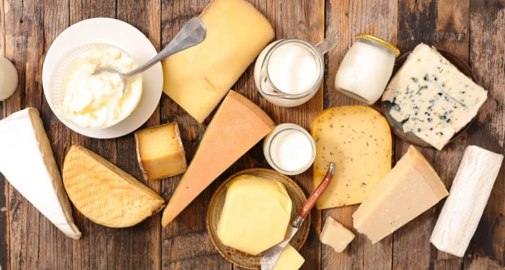Dairy products to increase bone building